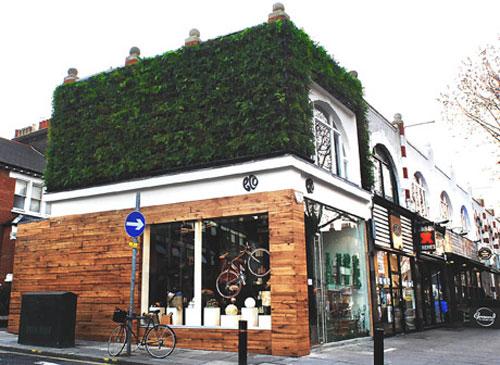 Eco-Boutique Spotlight...