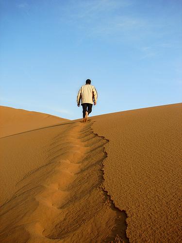 Desert Yogi