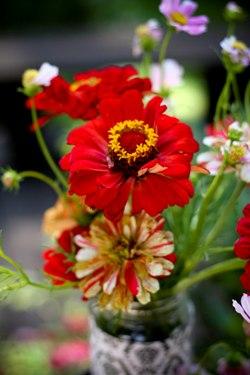 . Sarah Klein Photo - Organic Flower Arrangment