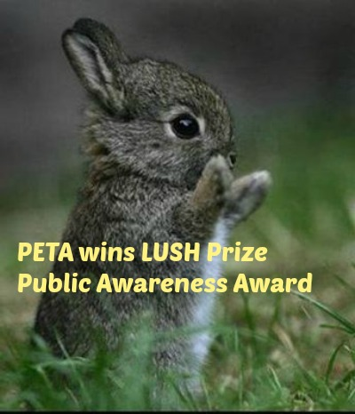 PETA wins LUSH Award Inertia Creeps at Flickr.com, cc