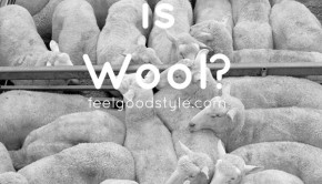 Wool is Green? What this campaign leaves out.