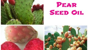 Prickly pear seed oil