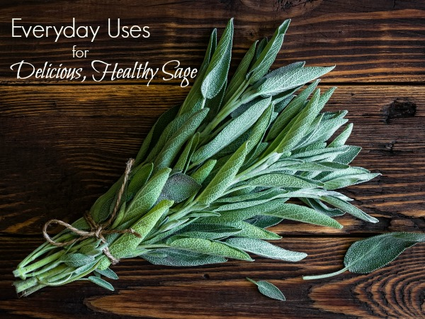Sage Advice Everyday Uses for Healthy Herbs