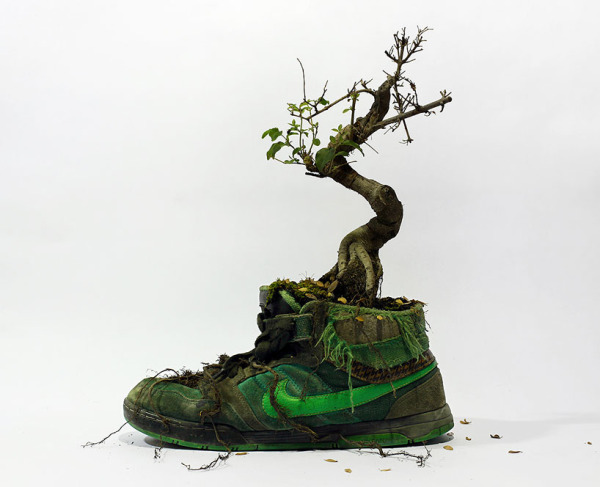 These Cool Nike Shoes Really Grow on You (Really)