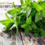 The Natural Health Benefits of Peppermint