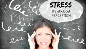 Stress: How It Hurts + Helps Us