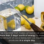 Artisanal Ice