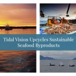 Tidal Vision Upcycles Sustainable Seafood Byproducts for Clothing + Accessories
